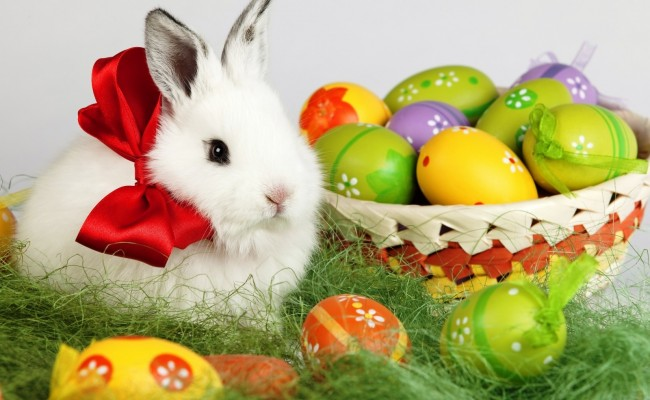 Easter-Bunny-Desktop-Wallpaper-Free